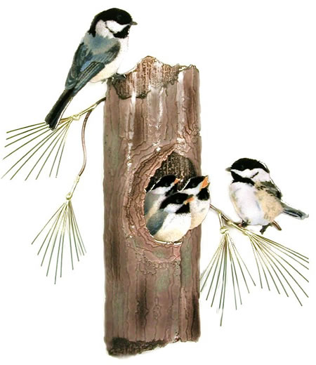 Chickadees Nesting, Wall Sculpture
