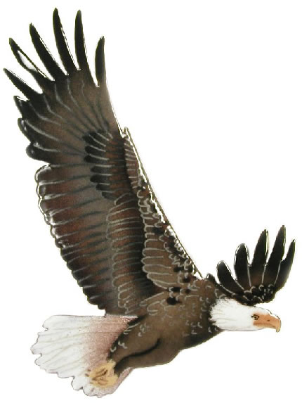 Bald Eagle In Flight Wall Sculpture