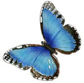 Blue Morpho Butterfly Wall Sculpture