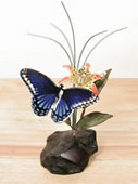 Blue Butterfly on Manzanita Tabletop Sculpture