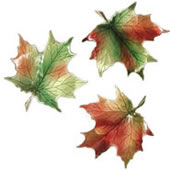 Sugar Maple Leaf Wall Sculpture (Set of 3)