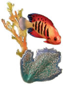 Flame Angelfish & Seafan Wall Sculpture
