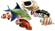 Coral Reef Fish Gathering, SmallWall Sculpture