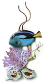 Flagtail Surgeonfish In Coral Wall Sculpture