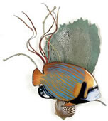 Emperor Angelfish with Sea Fan