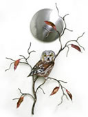 Saw Whet Owl With Stainless Steel Moon Wall Sculpture