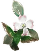 Hummingbird with White Dogwood Wall Sculpture