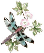 Check Winged Dragonfly with FlowerWall Sculpture