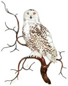 Snowy Owl on Branch Wall Sculpture
