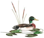 Mallard Duck Wall Sculpture