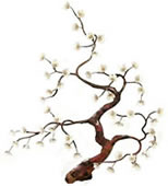 Flowering Blossom Tree Wall Sculpture- White