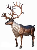 Bronze Caribou Sculpture
