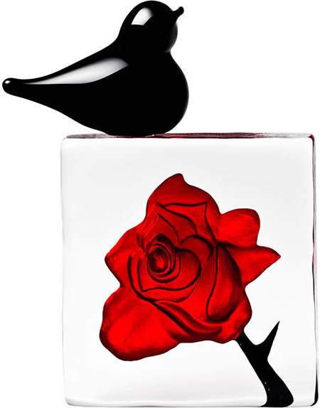 Blackbird with Red Rose