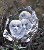 Crystal Owlets Trio Sculpture
