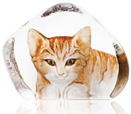 Crystal Cat Figurine with Color