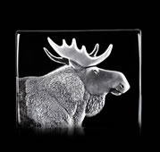 Crystal Moose Sculpture
