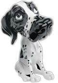 Bonny the Black and White Pointer