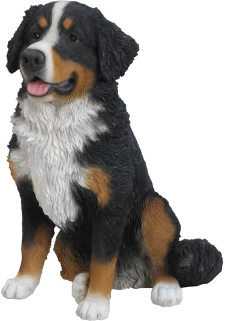 Bernese Mountain Dog Statue- 21.75