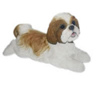 "Lying Brown Shih Tzu 14.25""L"