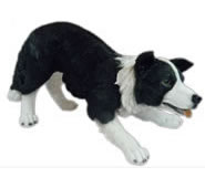 "Realistic Border Collie Statue 24.75""L"