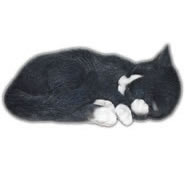 "Sleeping Cat Statue- Black/White 11.75""L"