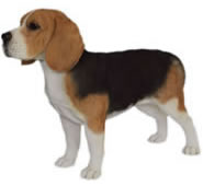 "Realistic Standing Beagle Dog Statue- 15.5""H"