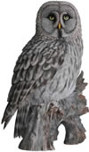 "Great Grey Owl Statue- 20.5""H"
