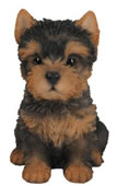 Realistic Yorkshire Terrier Puppy Statue