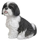 "Sitting Black/White Shih Tzu Statue 11""L"