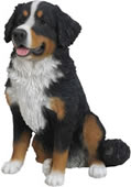 "Bernese Mountain Dog Statue- 21.75""H"