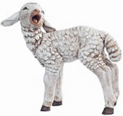Fontanini Sheep with Head Turned Nativity Statue