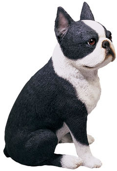 Boston Terrier Statue by Sandicast