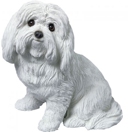 Maltese Dog Statue by Sandicast