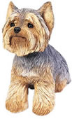 Yorkshire Terrier Dog Statue by Sandicast