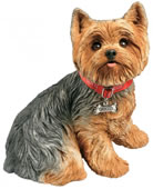 Yorkshire Terrier Dog Statue- Life Size