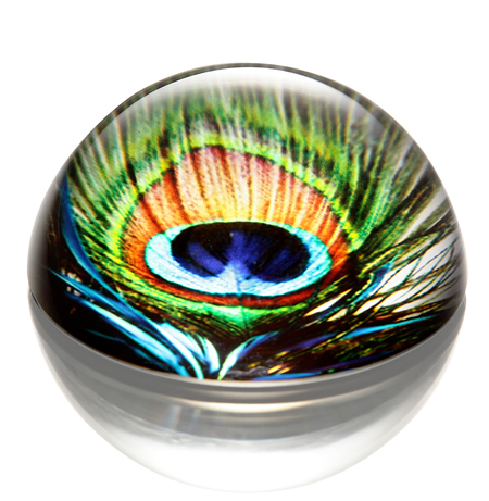 Art Glass Peacock Feather Paperweight