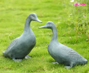 Lucky Duckies Garden Statue Pair