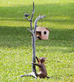 Bird House and Cat Garden Sculpture