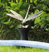 Dragonfly Hose Guard