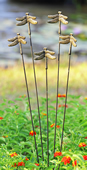 Dragonflies Flexible Garden Stake