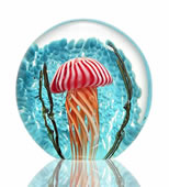 Art Glass Striped Jellyfish Paperweight