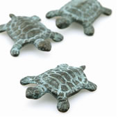 Turtle Minimals Mini Figurines, Pack of 6