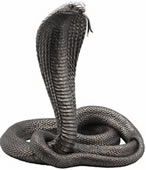 King Cobra Snake Sculpture