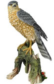 Sparrow Hawk-Painted Bird Statue
