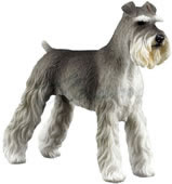 Giant Schnauzer Dog Figurine