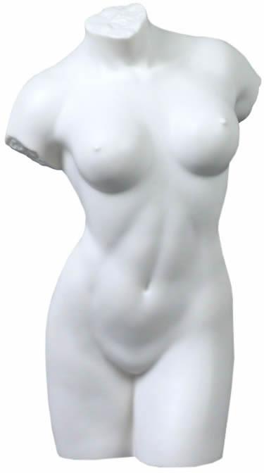 Torso Nude 89