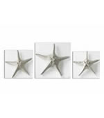Silver Starfish Wall Art, Set of 3